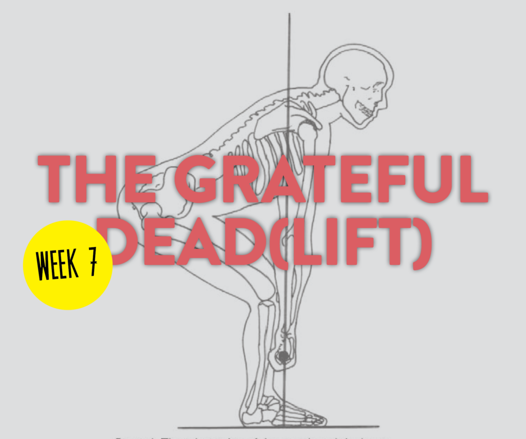 Grateful DL Week 7